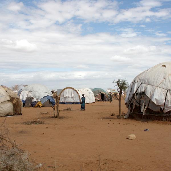 Dadaab Camps